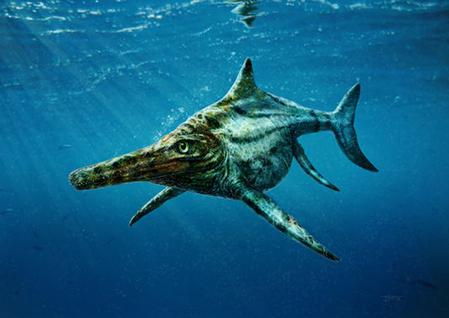 Ichthyosaurus-02